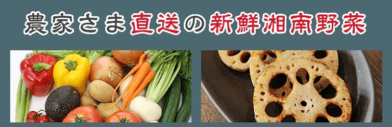 農家さま直送の新鮮湘南野菜